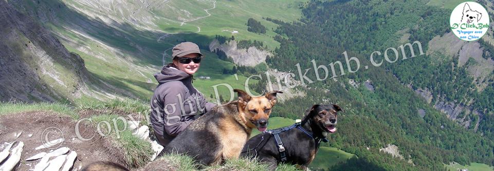 Randonnées de Haute-Savoie à découvrir avec un chien