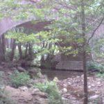 En Corse avec son chien : le camping municipal de Zonza