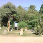 Découvrez la Corse avec votre chien : séjournez au camping Arutoli
