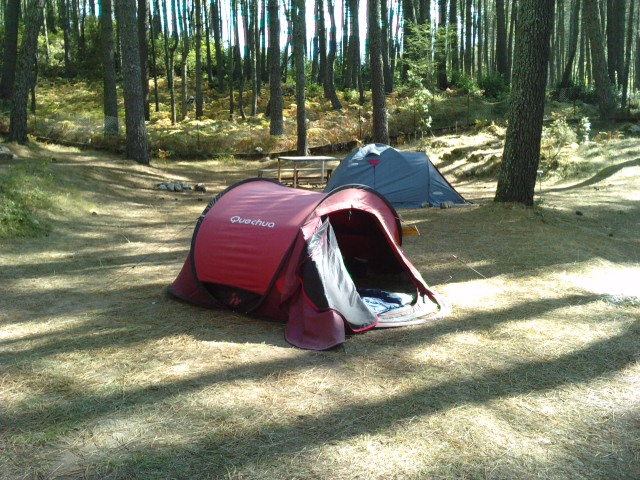 Camping Zonza avec un chien