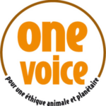 Label One Voice orange