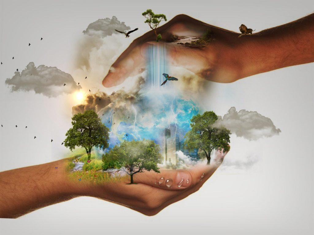 Cruelty Free : les labels pour une consommation éthique