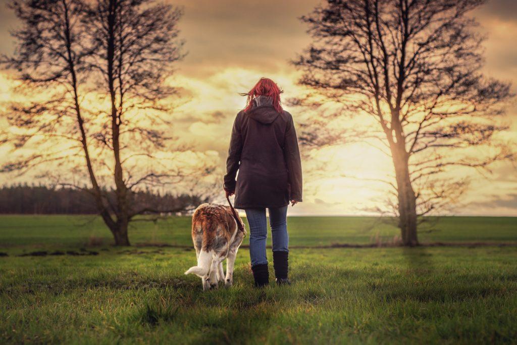 marche au pied chien en 5 étapes