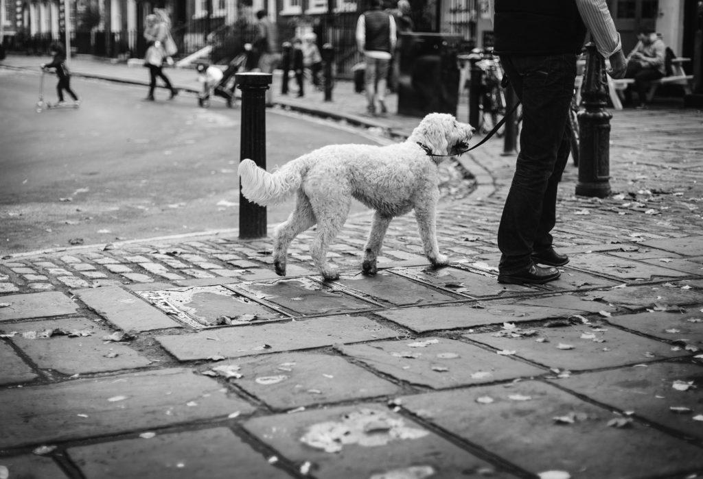 Marcher au pied en ville