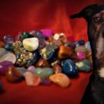 Lithothérapie : bienfaits des pierres pour le chien