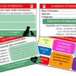 Carte d'urgence : sauve votre animal et indique vos informations médicales