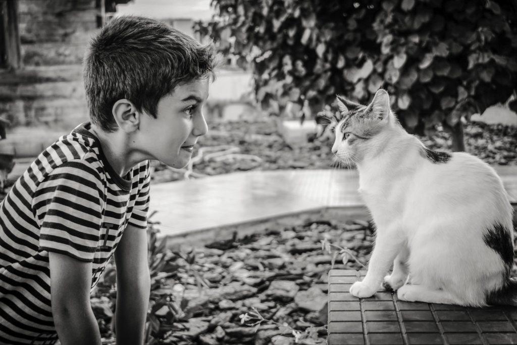 Tout le monde peut communiquer intuitivement avec les animaux