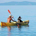 Quel kayak choisir pour  naviguer avec un chien : 7 critères