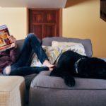 Comment occuper son chien pendant le confinement dû au Coronavirus