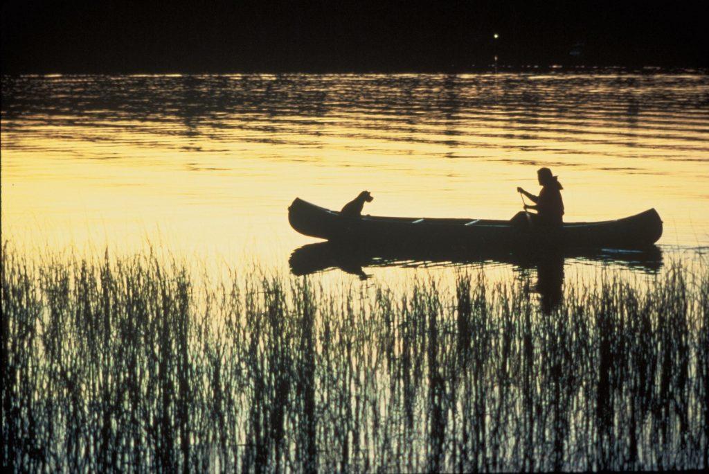 Kayak ou Canoë : quelles différences ?