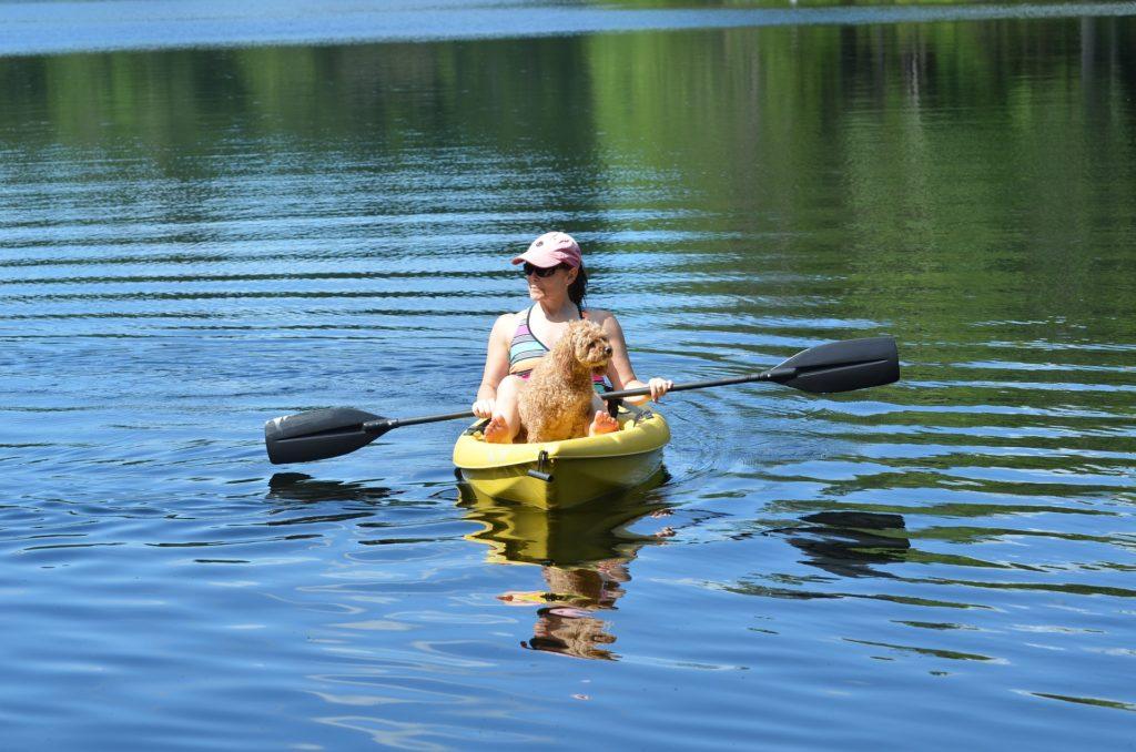Pratique du kayak et réglementation