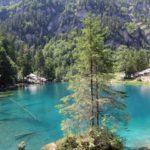 Découvrir la Suisse avec son chien : 8 balades et randonnées
