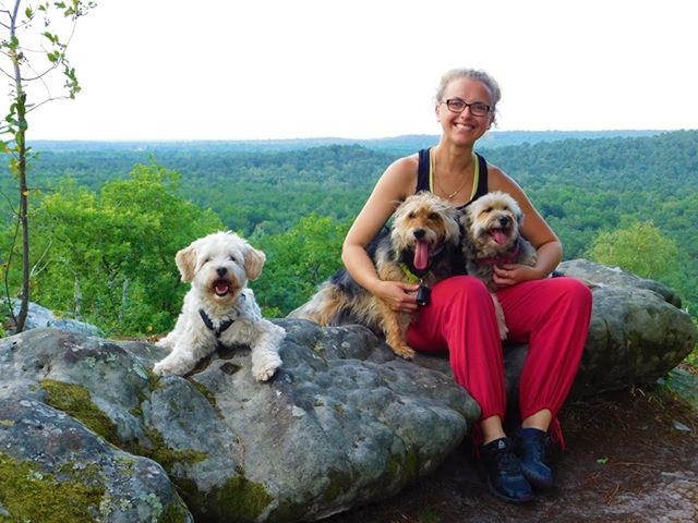 Sur les chemins de Compostelle avec 3 chiens