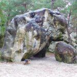 rochers du massif de Fontainebleau avec chien