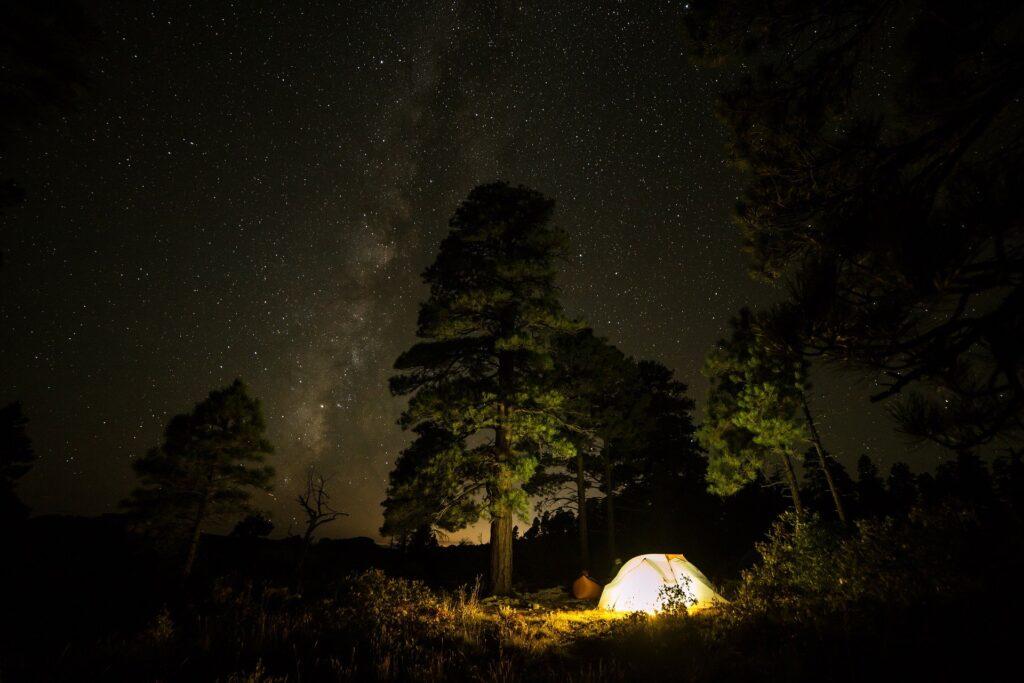 Dormir en tente en bivouac avec un chien