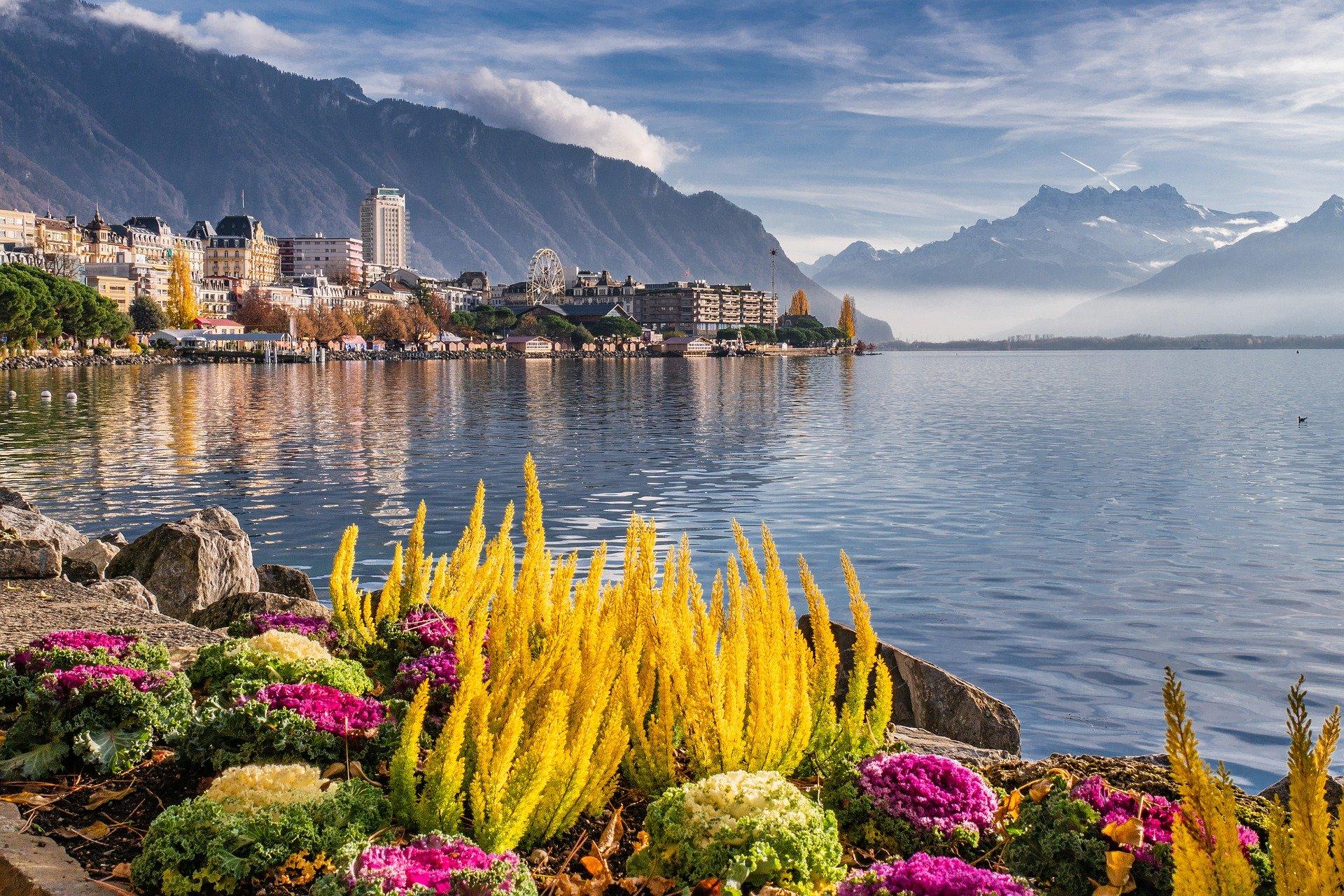 La Léman : la Suisse plus DogFriendly