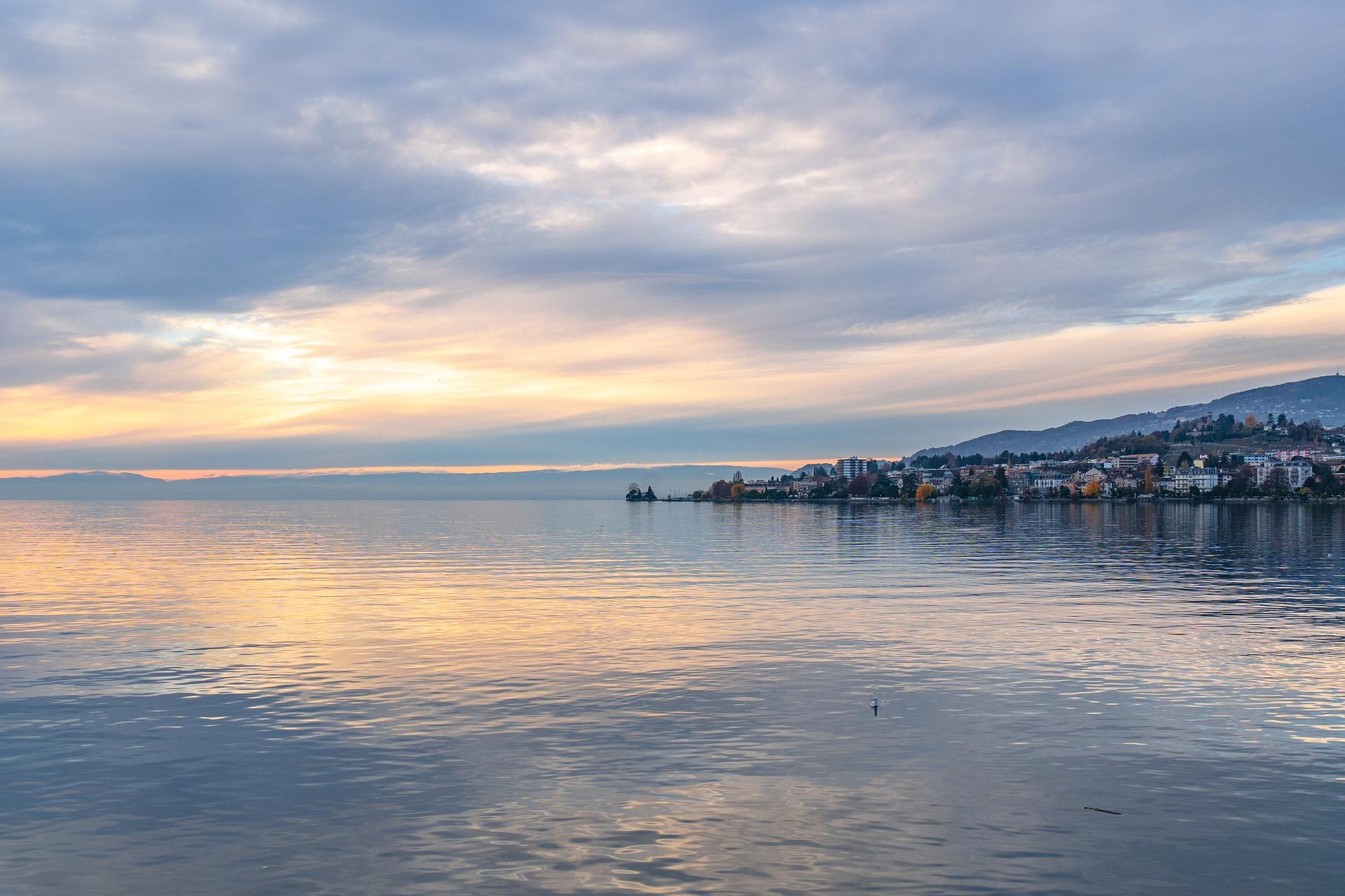 Lac Léman : la France et la Suisse et les plages acceptant les chiens