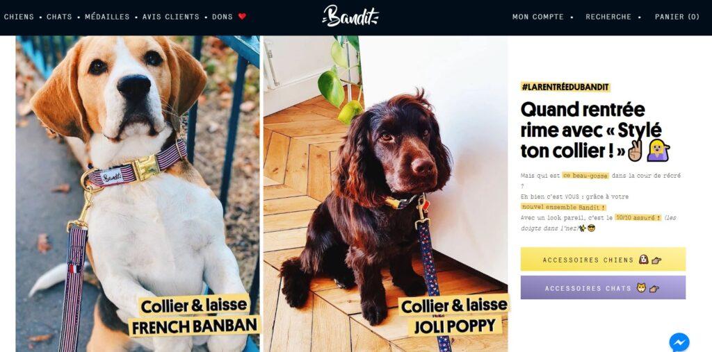 Artisan créateur accessoires pour chiens Bandit Paris