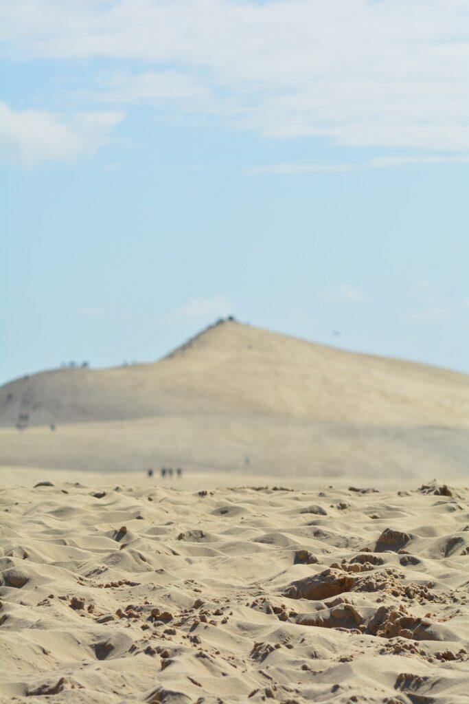 Le Sahara sous les coussinets depuis la Dune du Pilat