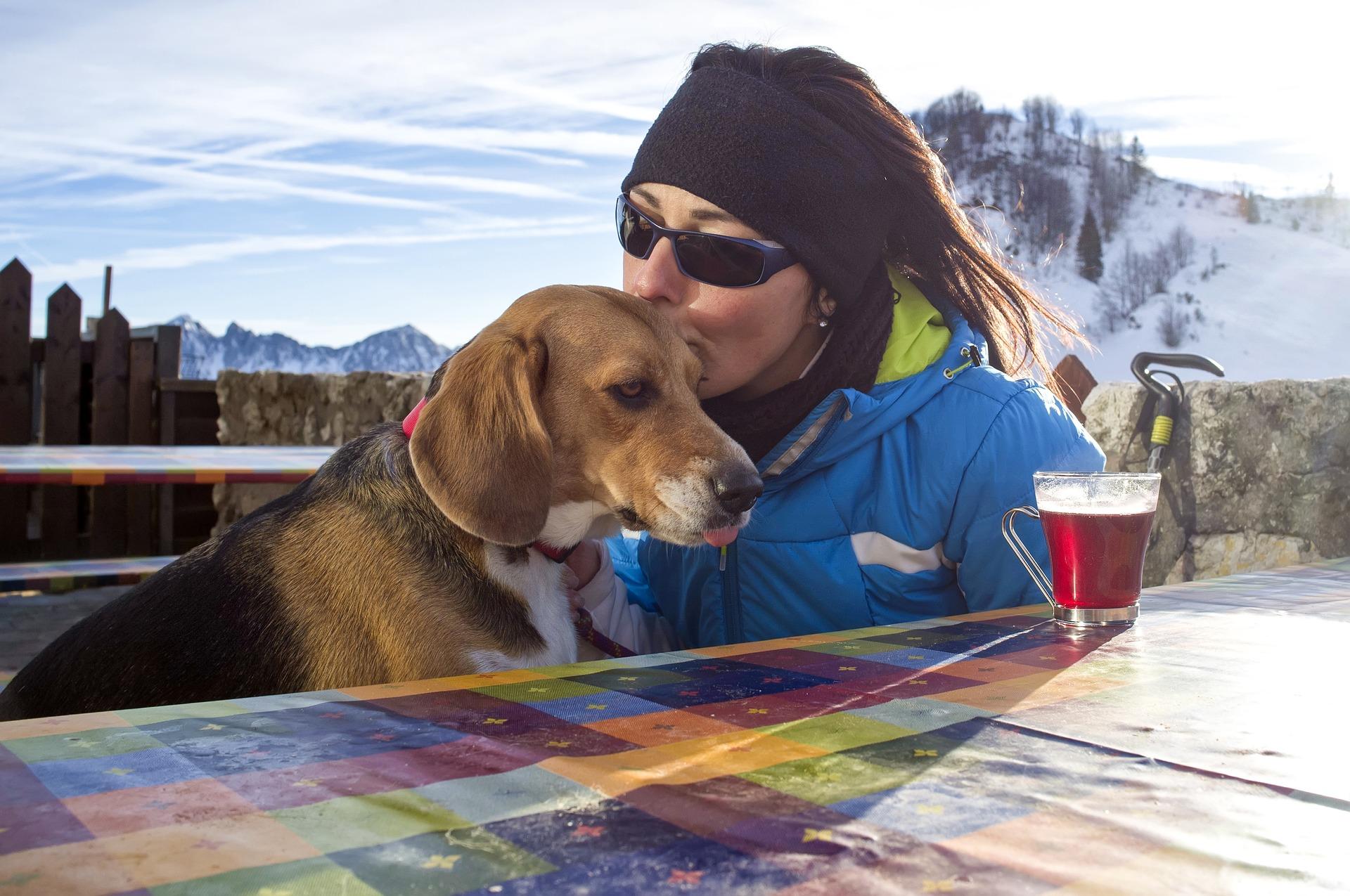 Gestion du ravitaillement en randonnée femme/chien