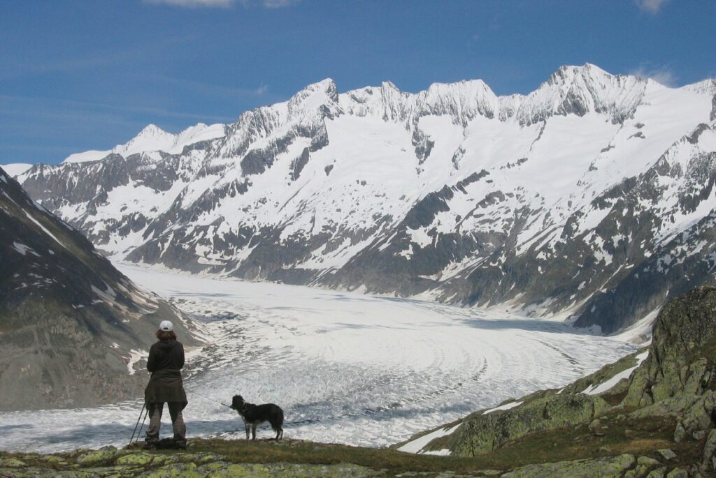 Où trouver des informations sur une randonnée avant de partir seule avec son chien