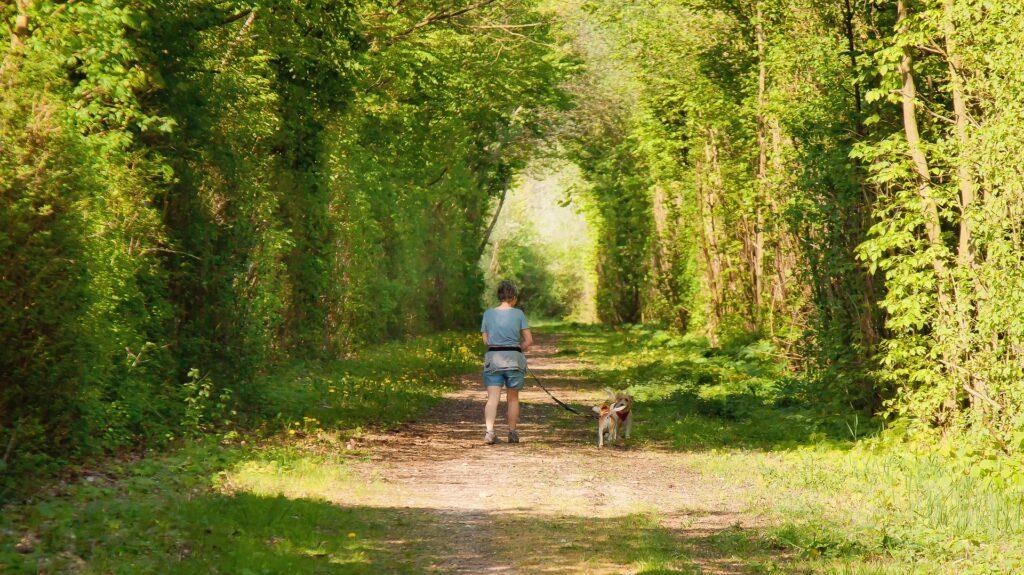 Randonner à la journée ou en itinérance quand on est une femme avec son chien : que du bonheur !